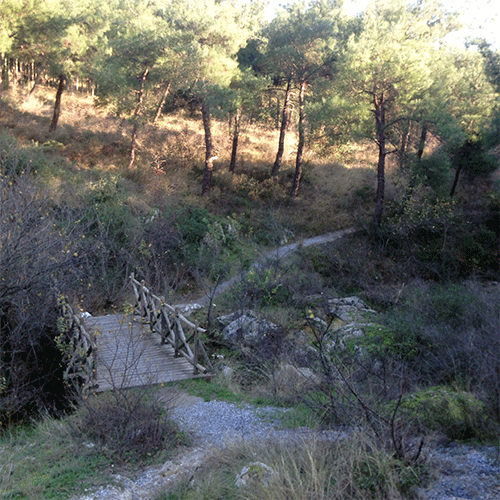 tirgiro_travel_experience_hiking_bridge