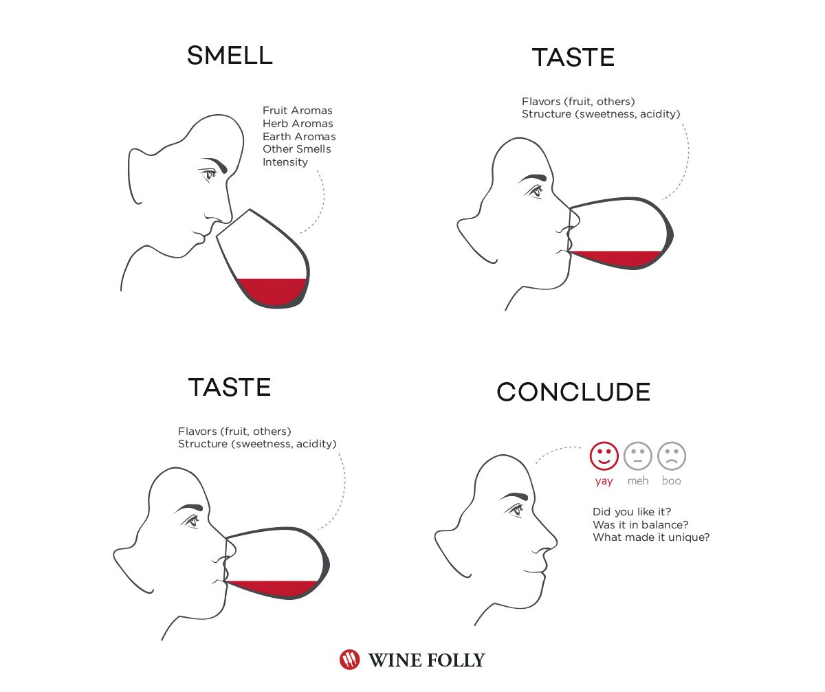 trigiro_how-to-taste-wine-steps