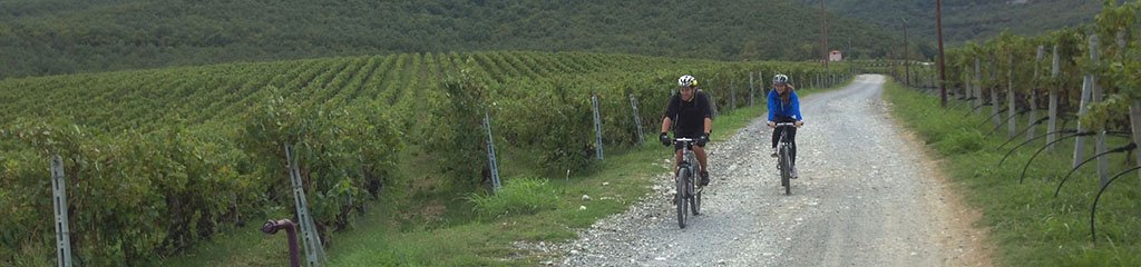 naoussa - tour | bike & wine