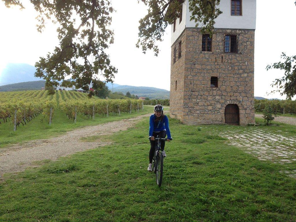 naoussa - tour | bike & wine
