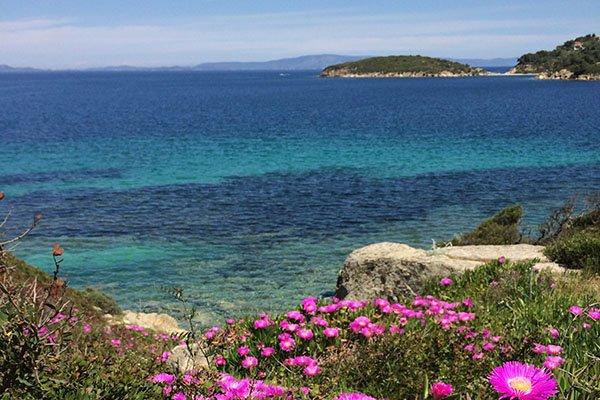 trigiro_sea-tour_north-greece