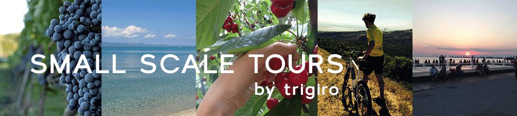 trigiro small scale tours