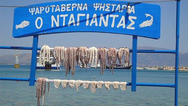 rigiro_tours_greece_wine-food-pairing_oktopus