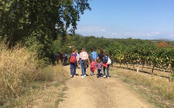 trigiro_tours_hike_with_kids_family_tour-013