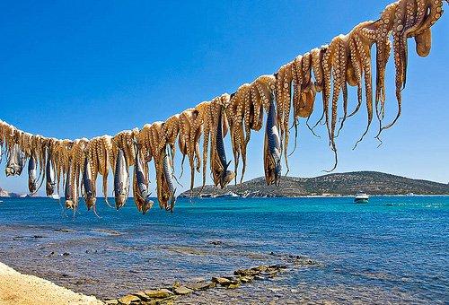 trigiro_tours_oktopus_beach