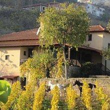 trigiro travel wine xinomavro naoussa dalamaras