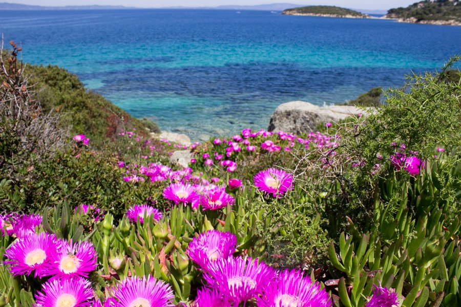 trigiro_unique-travel-experience_Greece-spring_sea