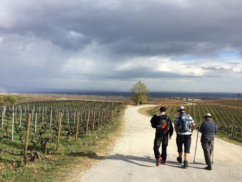 trigiro_unique_travel_experience_weekend_tour_activity_wine_hike