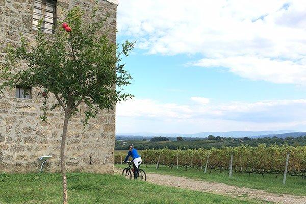 trigiro_wine-tasting-tour-Greece_estate-kir-yianni