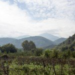 trigiro_wine_roads_north_greece-01