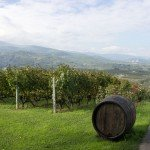 trigiro_wine_roads_north_greece-04